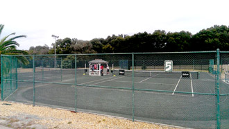 Brandywine Tennis Court