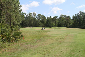 Cypress Head Golf Course