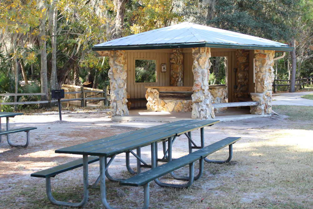 Dog Parks In Volusia County Fl
