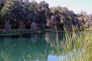 Gemini Springs Blueway