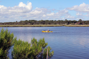 Tomoka River State Canoe Trail