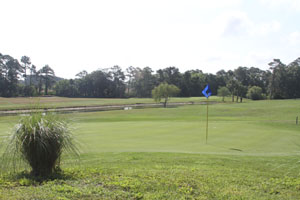 Turnbull Bay Golf & Country Club